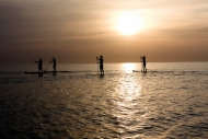 Stand Up Paddle Surfing/Boarding/SUP in Devon - South West - About SUP